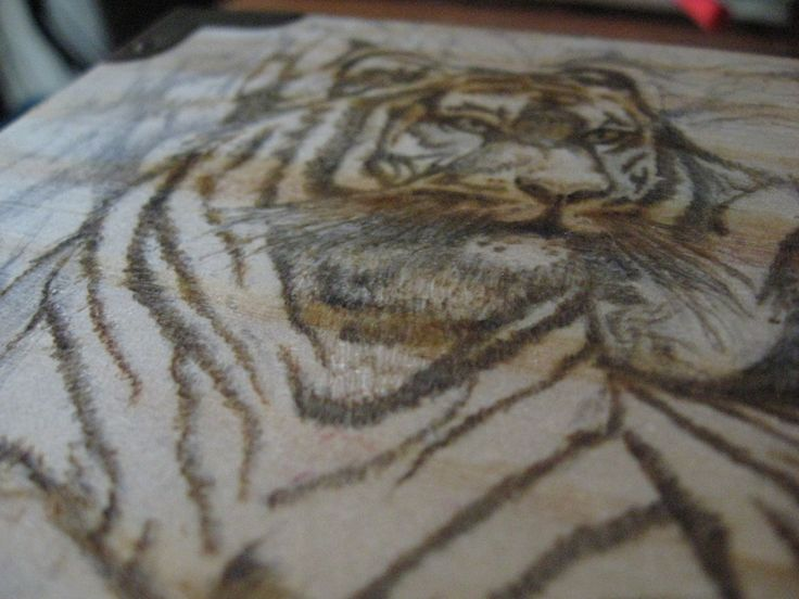 Stage 3, Close up of the detail on the tiger, just the start of the wood burning process.