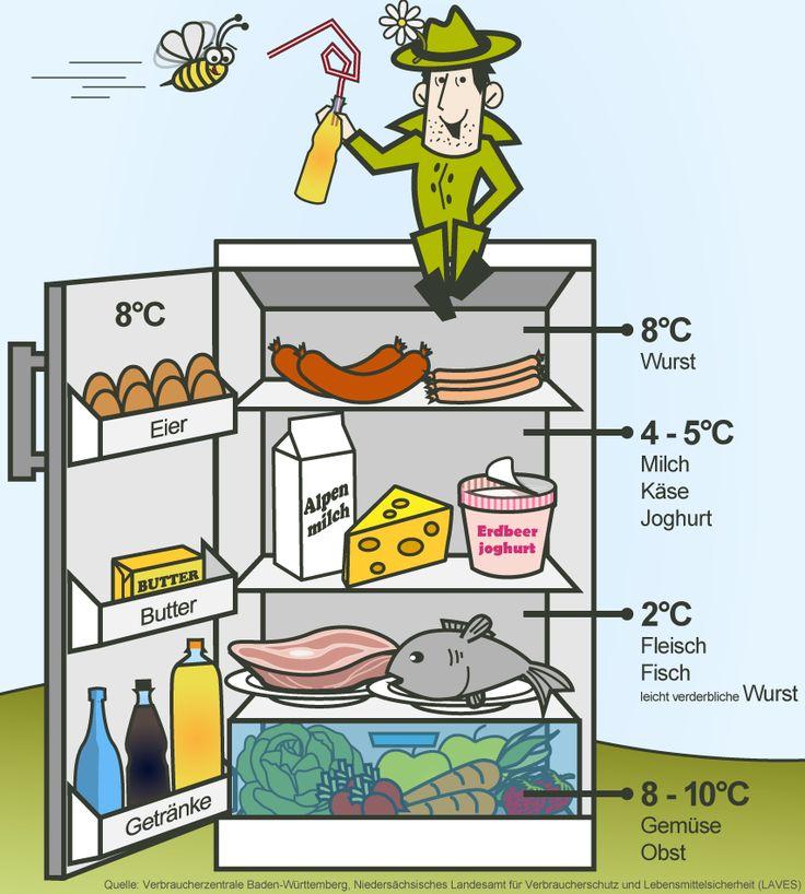 Welche Kühlschranktemperatur ist ideal? Tipps und Tricks für den perfekt eingeräumten Kühlschrank