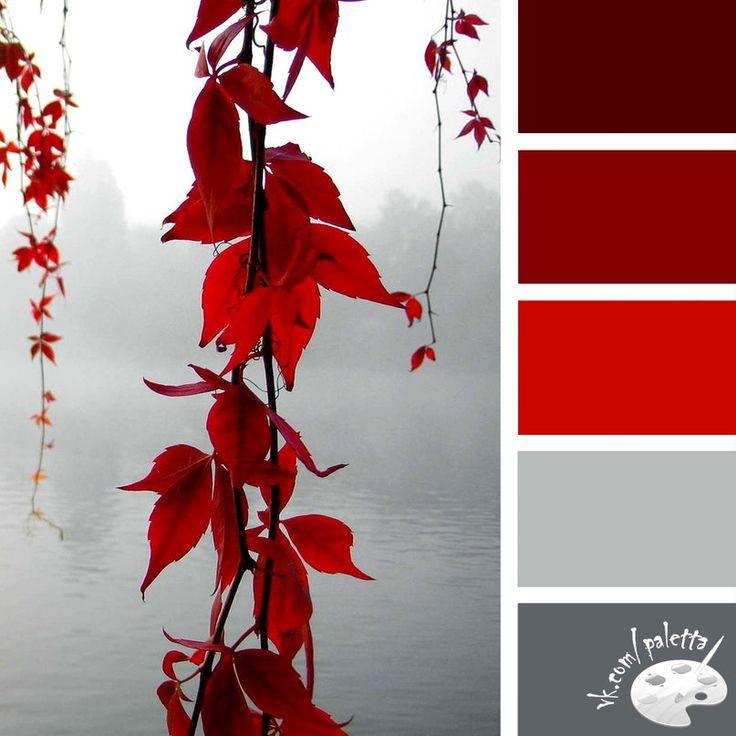 Colour palette.