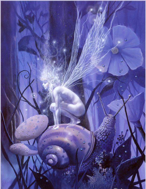 Xyla's Enchanted Faerie Forest