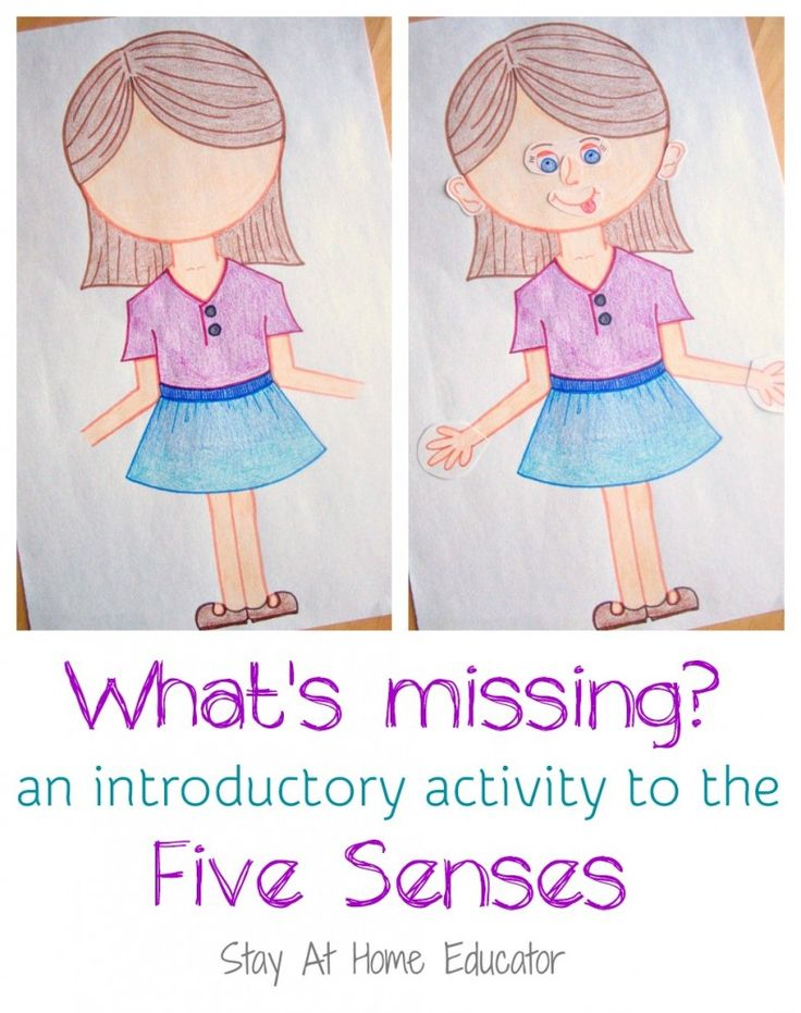 What's Missing An introductory activity to the five senses - Stay At Home Educator