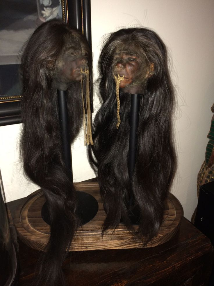 Pair of Real Human Shrunken Heads For Sale!!  G. Howard McGinty / Director  www.RealShrunkenHeads.com