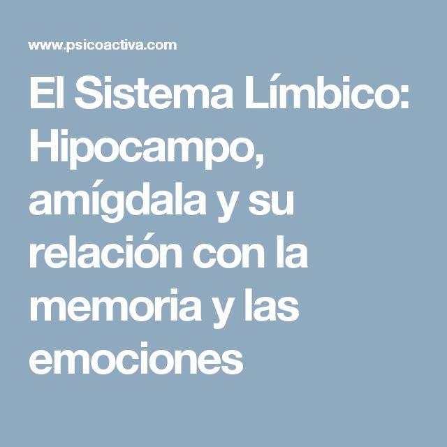 El Sistema Límbico: Hipocampo, amígdala y su relación con la memoria y las emociones