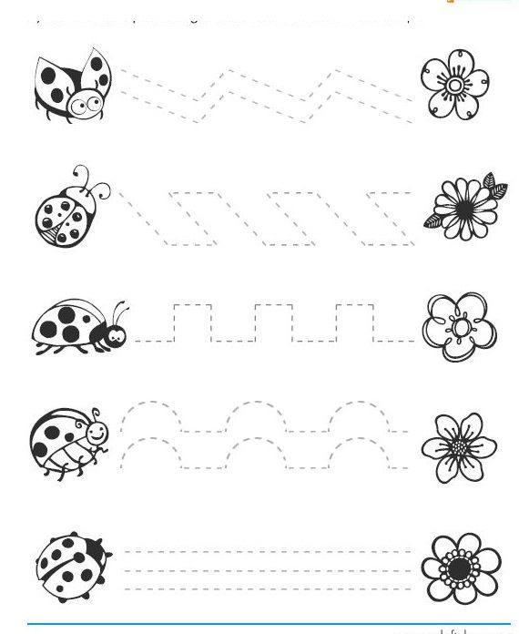 free ladybug trace worksheets | Crafts and Worksheets for Preschool,Toddler and Kindergarten