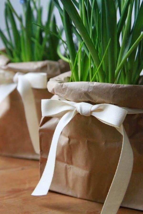Le Frufrù: Bulbi di primavera