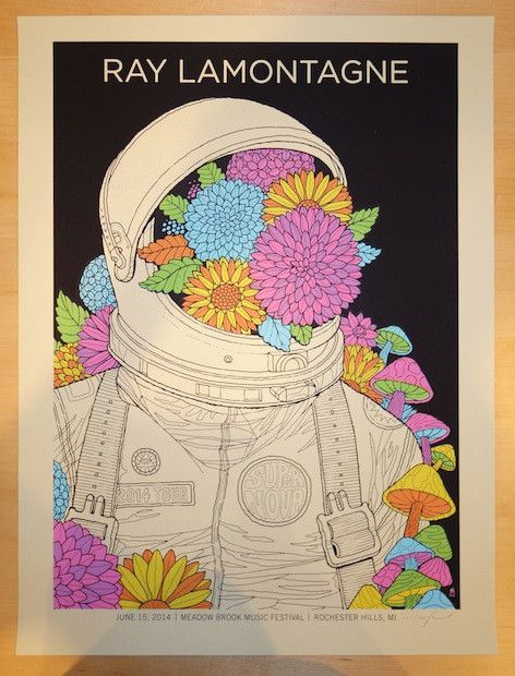 2014 Ray Lamontagne - Rochester Hills Concert Poster by Methane