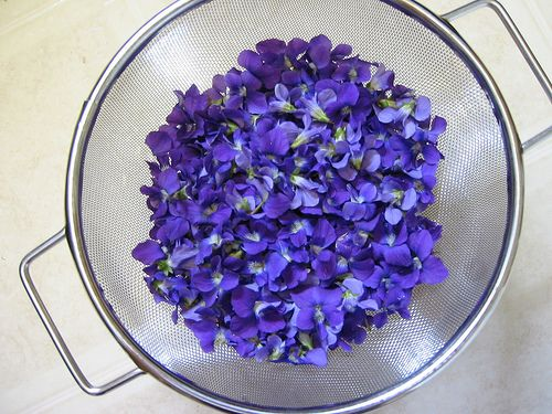 Violets are in season, here are 4 ways to make edible candied violets. So pretty on a lemon cupcake.