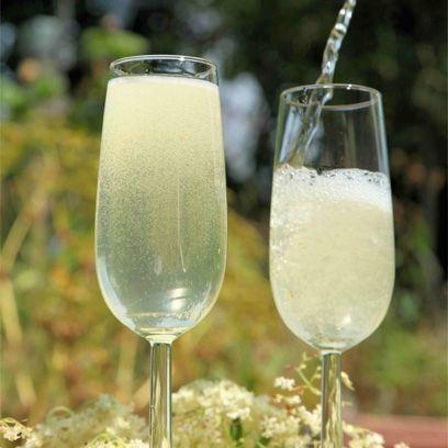 River Cottage sparkling elderflower wine recipe | How to make elderflower wine - Red Online