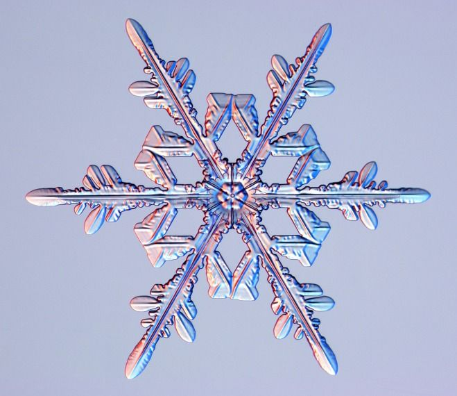 Snowflakes Up Close - Stellar dendrite.  These types of snowflakes are actually very rare, perhaps one in a million.