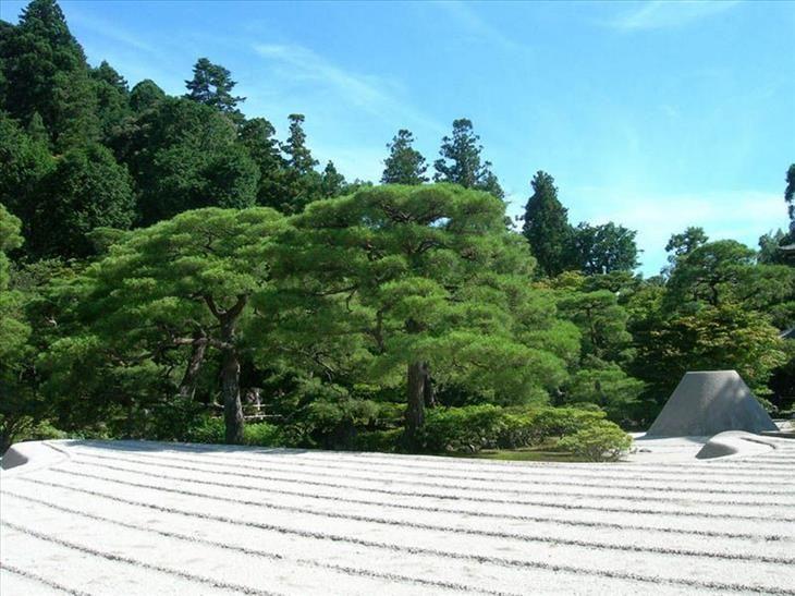M s de 25 ideas incre bles sobre jardines japoneses en for Jardin japones hagiwara de san francisco