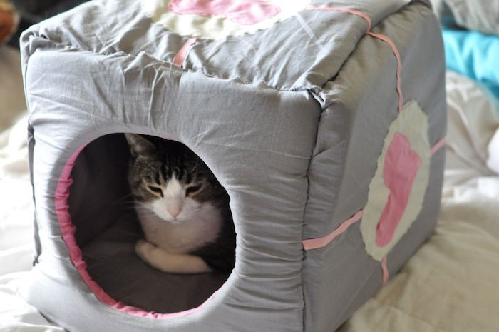 For the Good of All of Us, Build a Companion Cube for Your Cat: Cat Beds, Cats, Cat Companion, Dogs Cat, Companion Cubes, Cat House, Catpanion Cubes, Diy Projects, Pet House