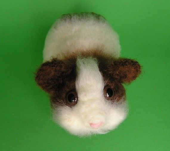 1000+ images about Crochet cavys (guinea pigs) on ...