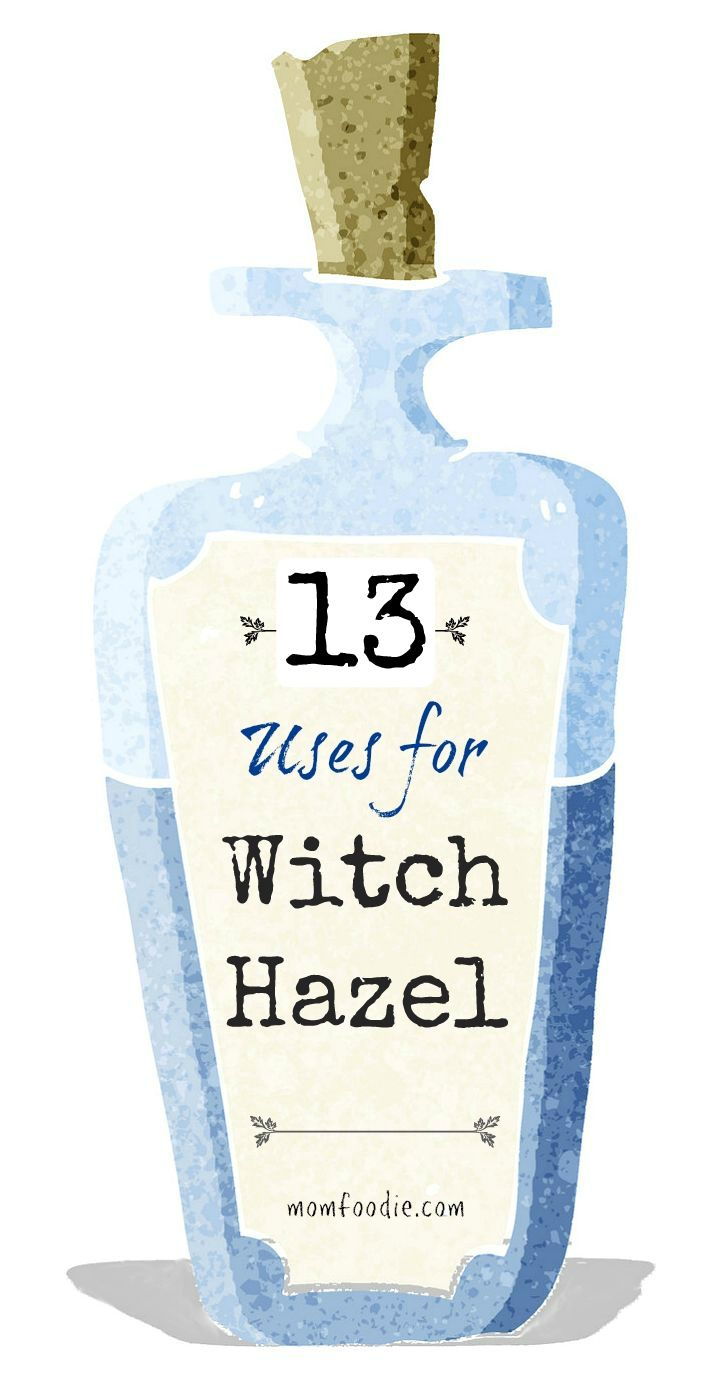 Witch hazel has many uses in and around the home. It is derived from the leaves and bark of the Hamamelis Viginiana, a common shrub in North America. Native Americans have used Witch Hazel medicinally for generations, but it is currently becoming popular with the mainstream public.
