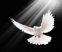 Los dones del Espíritu Santo y la oración (1) Ven Espíritu Creador