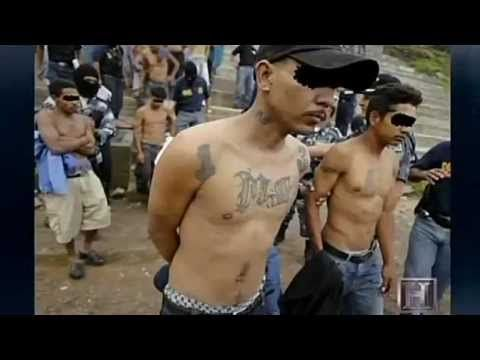 MS-13, documentary, and list of others with it. You want to know more about the gang members that are flooding through the boarders right now check this out, they are one of the fastest growing gangs across the globe