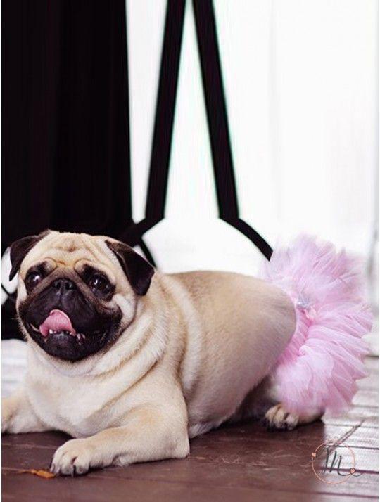 Tutù rosa per cane.  Originale e divertente idea da utilizzare se il vostro cagnolino sarà presente alle vostre nozze. Tutù rosa con fiocchetto. Misure: da 25,4 a 45,7 cm. #matrimonio #ideasforwedding #weddingideas #dogs #cats #pets #accessoripercani #wedding #tutù #tutùrosa