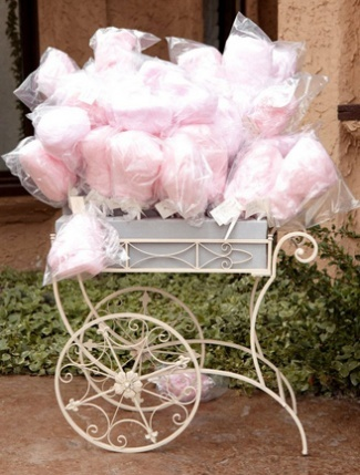 The lovely staff at the Four Seasons Paris was kind enough to supply us with an adorable display of cotton candy on our suite balcony! could be sweet for a girl baby shower...