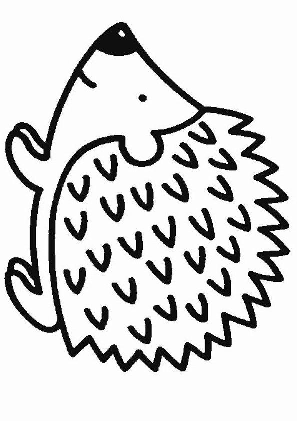 malvorlagen igel kostenlos juni - tiffanylovesbooks