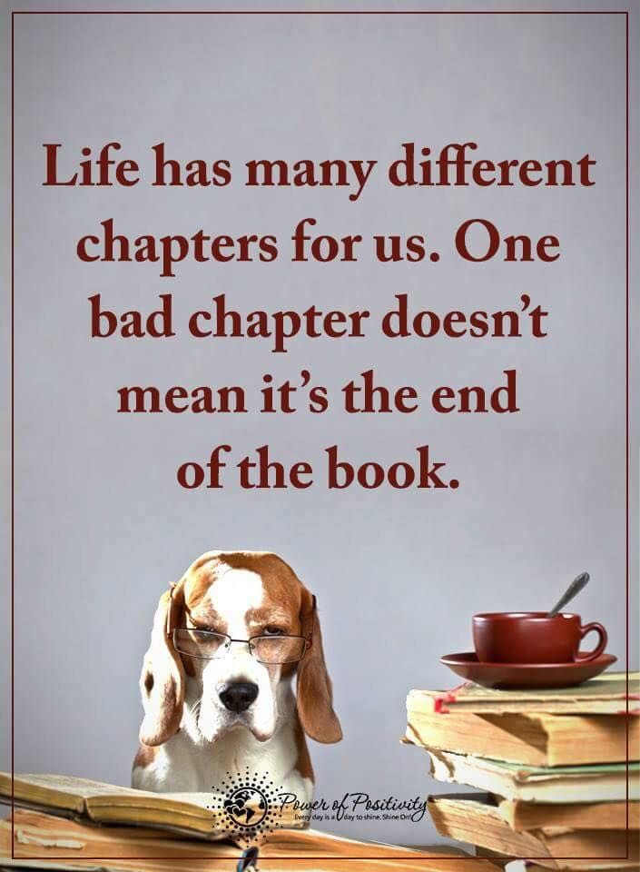 Life has many different chapters for us. One bad chapter doesn't mean it's the end of the book.  #powerofpositivity #positivewords  #positivethinking #inspirationalquote #motivationalquotes #quotes