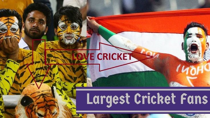 Cricket news-Cricket fans are unbeatable to the other sports fans Do you...