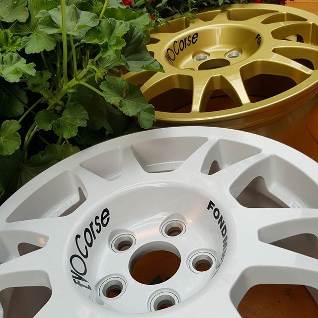 EVO Corse wheels in the vegetation |  EVO Corse Racing Wheels #evocorse