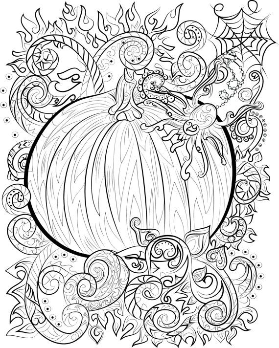 Halloween pumpkin and spider adult