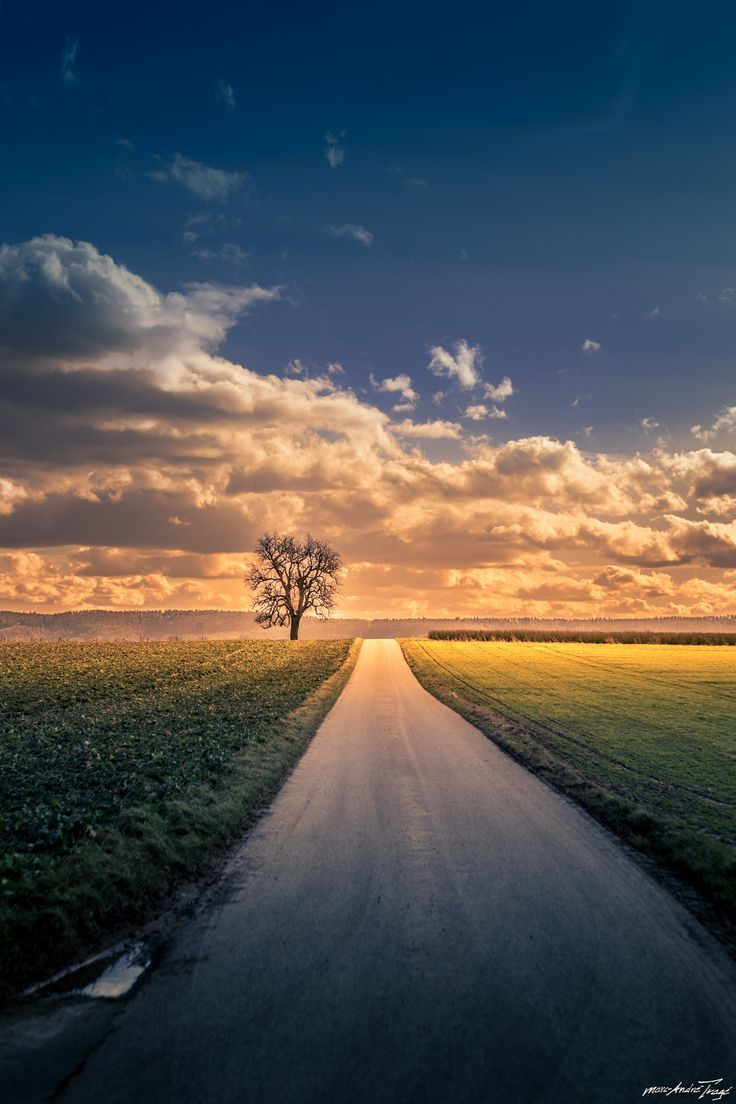 ~~Road to Glory by mt.sign~~