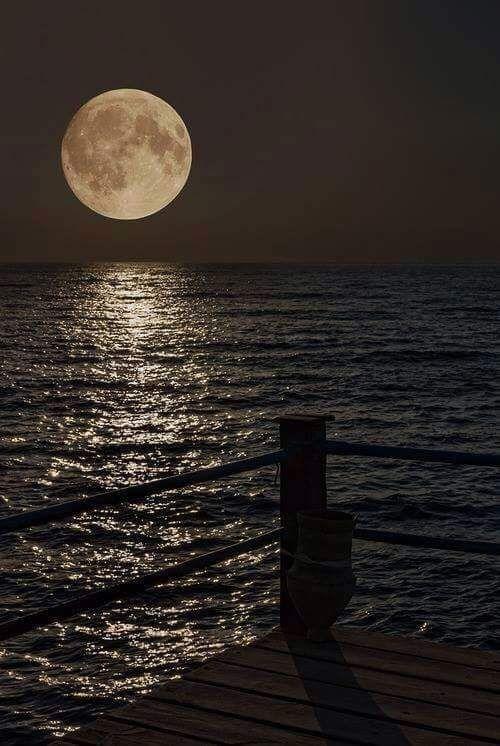 A romantic moonlight walk
