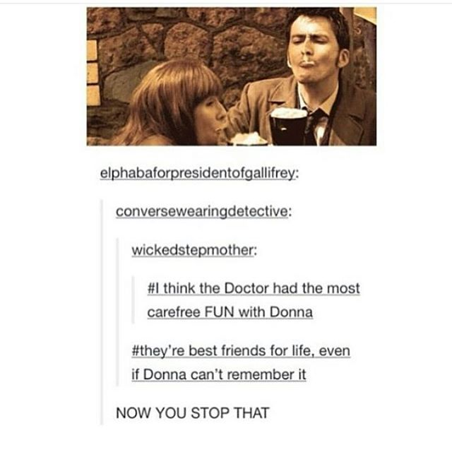 Donna was one of my fav companions. Unlike Martha and rose she was funny and exciting and she made the Doctor laugh as well. They worked well together