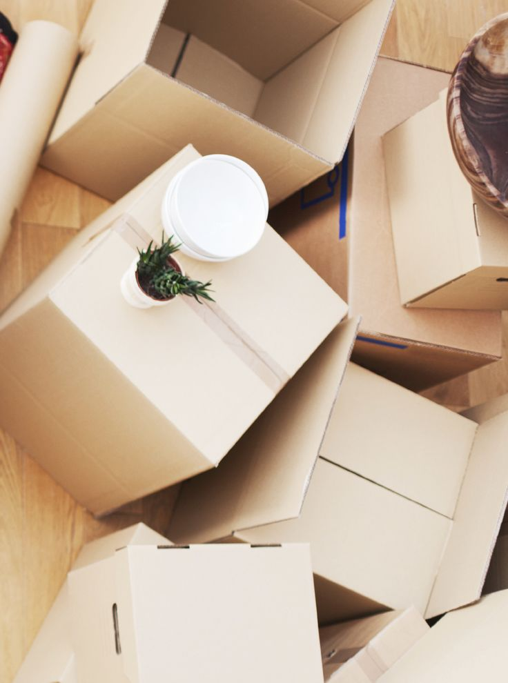 Removal services for interstate