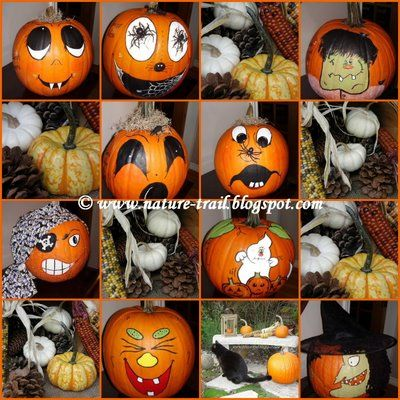 Top 25 Ideas About Pumpkins On Pinterest Pumpkins