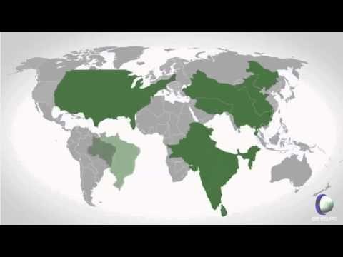La verdadera historia del sistema económico - YouTube