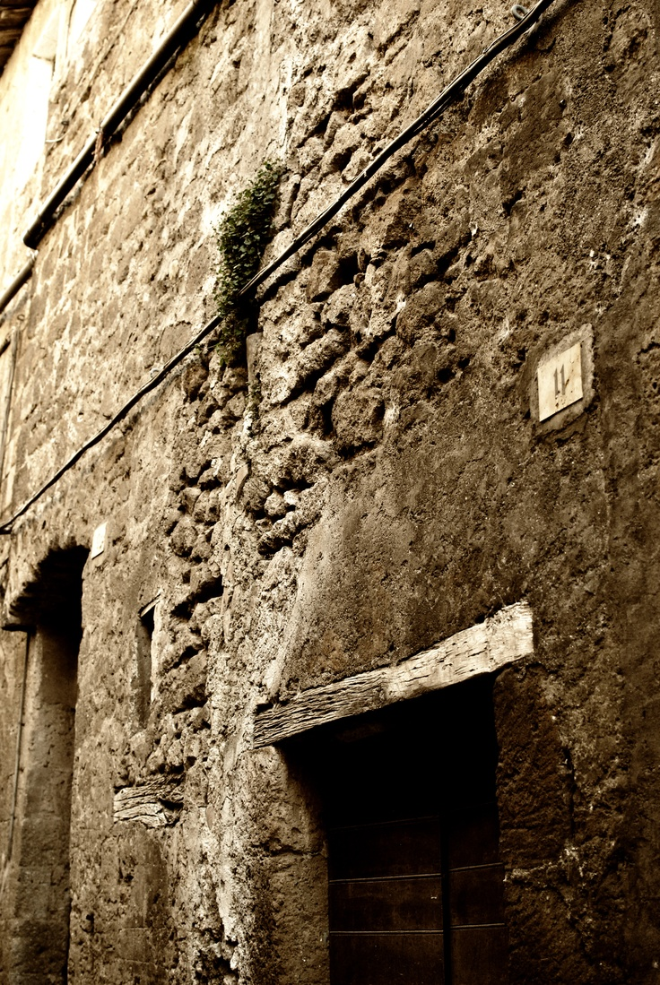 Orvieto, grass on the wall   (Orvieto ,TR http://g.co/maps/9ca9k )