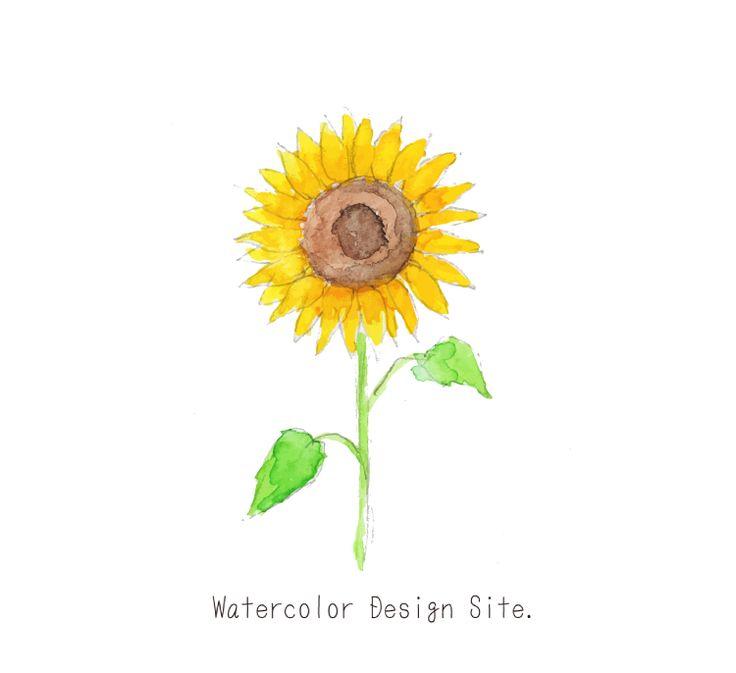 夏の象徴の花ひまわりイラスト ひまわりってずーーっとみてると