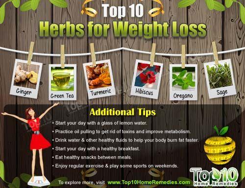 Herbs for weight loss Top 10 Herbs for Weight Loss