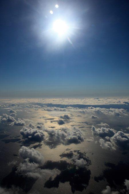 ほぼ日刊イトイ新聞 - エナガのねぐら。 カワイイ小鳥の観察記 フロム富士山麓