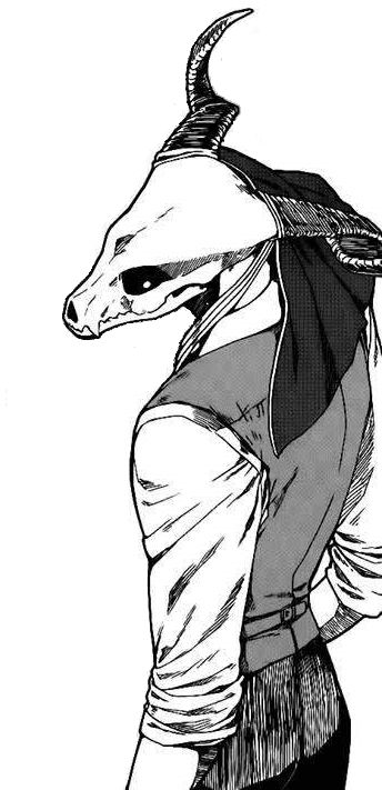 oh boy • elel-kyutto: The Ancient Magus Bride: Chise x...