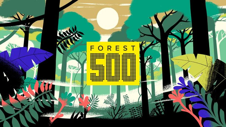 Forest 500 is the world's first ratings agency for rainforests. It tracks how key companies, investors and governments are performing in the race to remove…