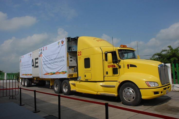 El contenedor que hoy salió para Japón es el primero de 10, que completarán las 200 toneladas que se exportarán en los próximos seis meses.