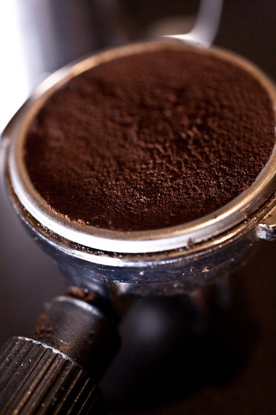 A Seattleites guide to coffee