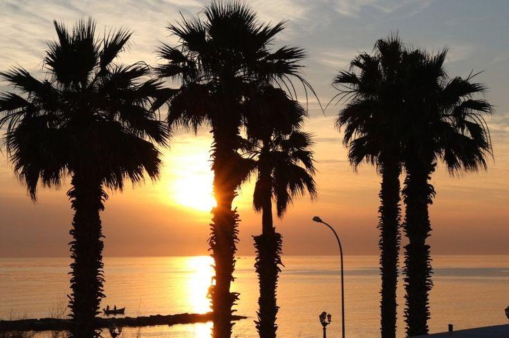 E' il 21 giugno, il giorno del solstizi, e alle 5,20 la prima alba dell'estate illumina Bari dipingendo di arancio il mare, le barche, il lungomare, i lampioni, le piante e gli amanti della corsa mattutina, come raccontano queste foto realizzate da Michele Cassano