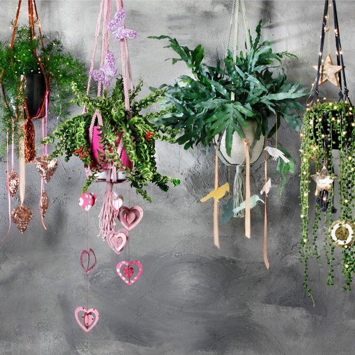 In de jaren '70 ontkwam je er niet aan, bungelende hangplantjes. En nu zijn ze helemaal terug! Maak er een eigen creatie van met leuke accessoires. #intratuin #bungelen #pothangers #herfst