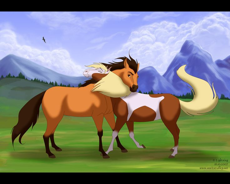 spirit stallion of the cimarron is the best movie. <3 the animation is perfect.