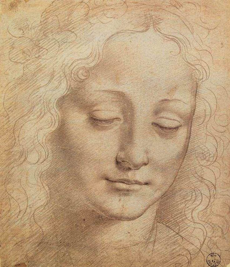 leonardo da vinci female head charcoal red chalk white lead on paper