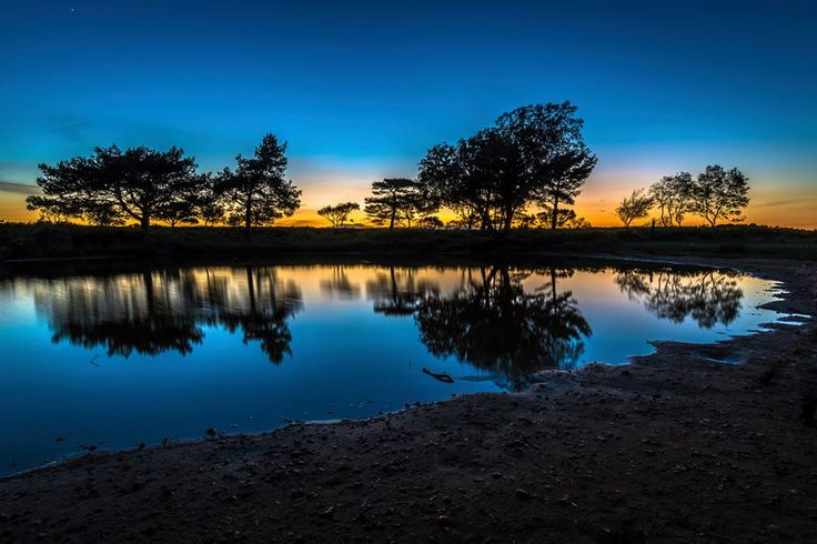 'Reflections' at Poole Harbour - Andy Lyons