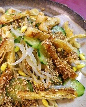 豆もやしときゅうりのゴマダレあえ レシピ・作り方 by bapaksan|楽天レシピ