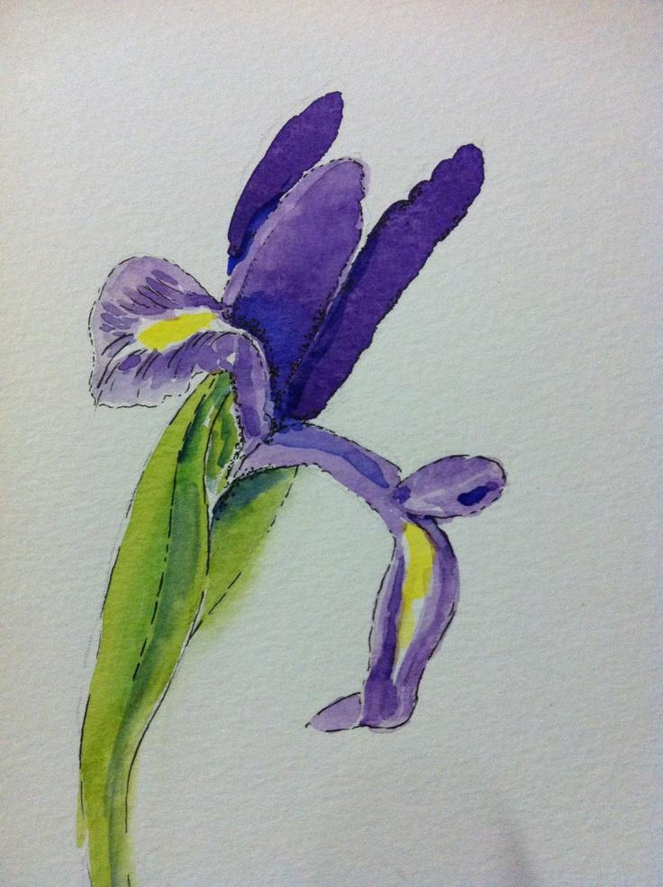 #watercolours #sketching #pen #ink #flowers #iris #drawing #floralart #floral #cardart