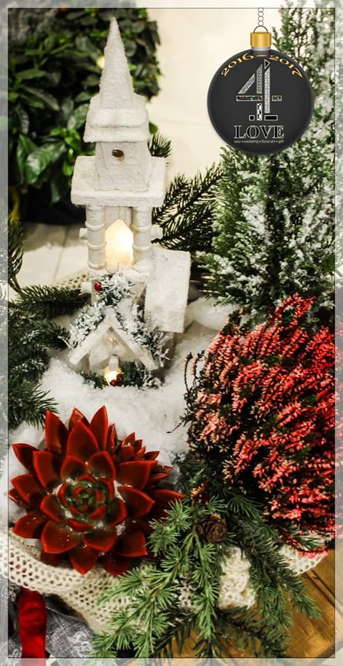 Χριστούγεννα 2016-2017 - #Χριστουγεννιάτικη #διακόσμηση σε #ξύλινο_καλάθι με #ξύλινο_σπιτάκι με φωτισμό και φυσικά μικρά #έλατα με τεχνιτό #χιόνι, #παχύφυτα και #λουλούδια της επιλογής σας κ.α. #4LOVEgr -Concept Stylist Μάνθα Μάντζιου &Floral Artist Ντίνος Μαβίδης