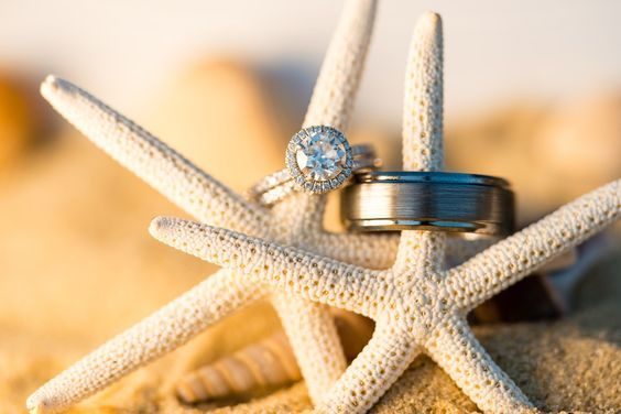 Starfish - Starfish Rings - Beach Wedding - Cape Cod - Pelham House - Cape Cod Wedding - Wedding Rings on Starfish #CapeCod #CapeCodWedding #PelhamHouseResort #BeachWedding #Starfish