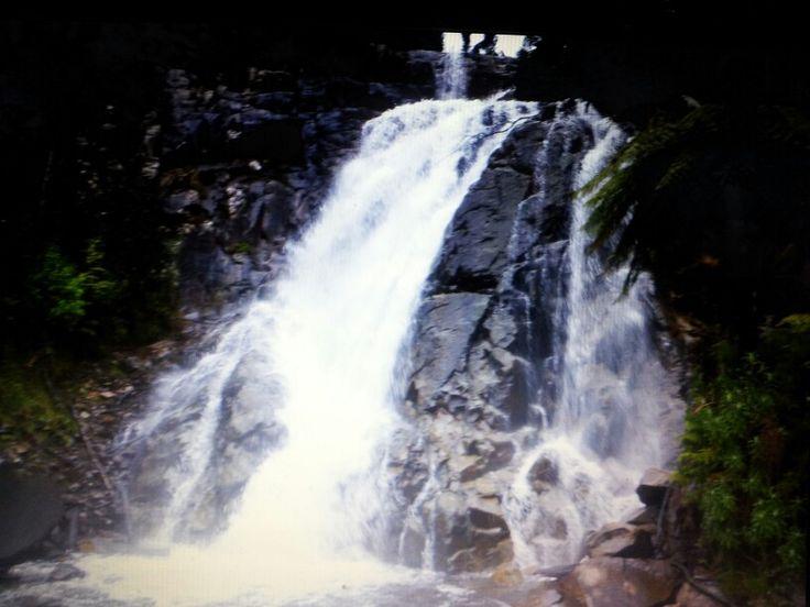 Stephenson Falls Victoria